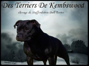 Kembswood