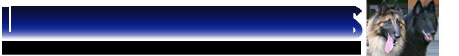 Logo piste noire