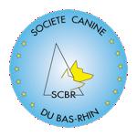 Nouveau logo scbr