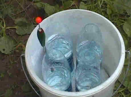 Les bouteilles dans le seau à 4 mètres